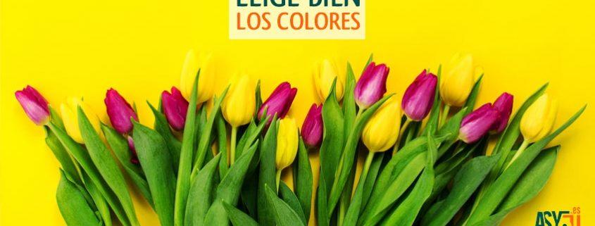 paleta-colores-diseno-grafico